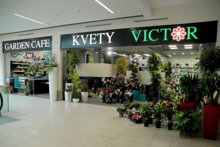 Kvety Victor Forum Poprad